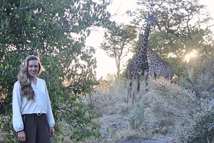 Giraffe sighting Botswana