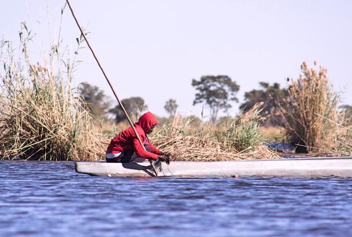 Mokoro polers in Botswana