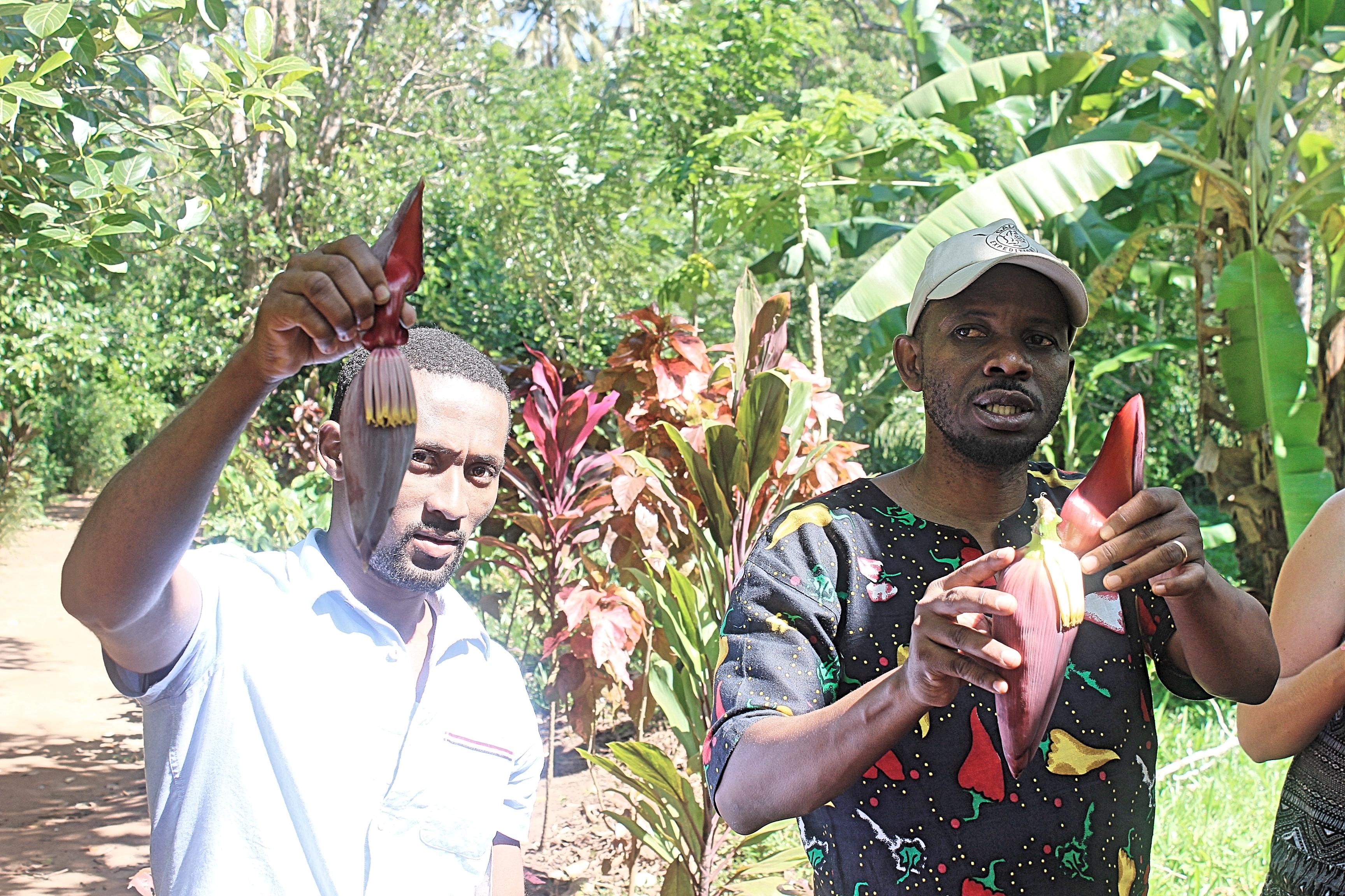 Zanzibar Spice Tour Stone Town