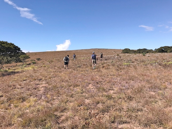 Hiking in Mount Green Chimanimani