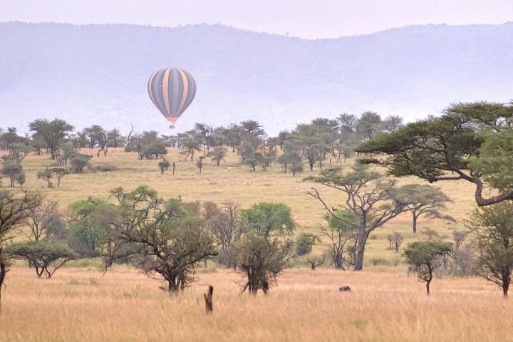 Hot air balloons in the Serengeti Tanzania