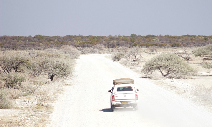 What does a game drive look like at Etosha National Park?